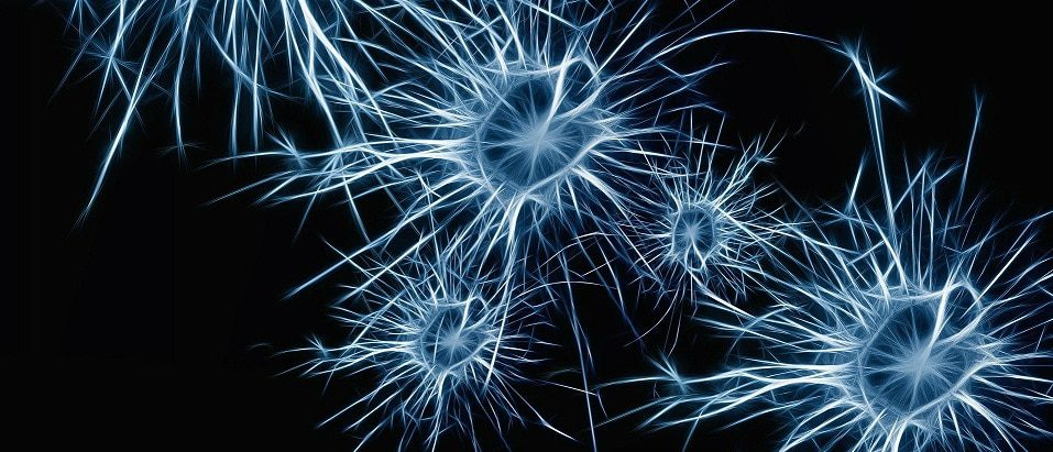 wat zijn hersengolven frequentie neuronen