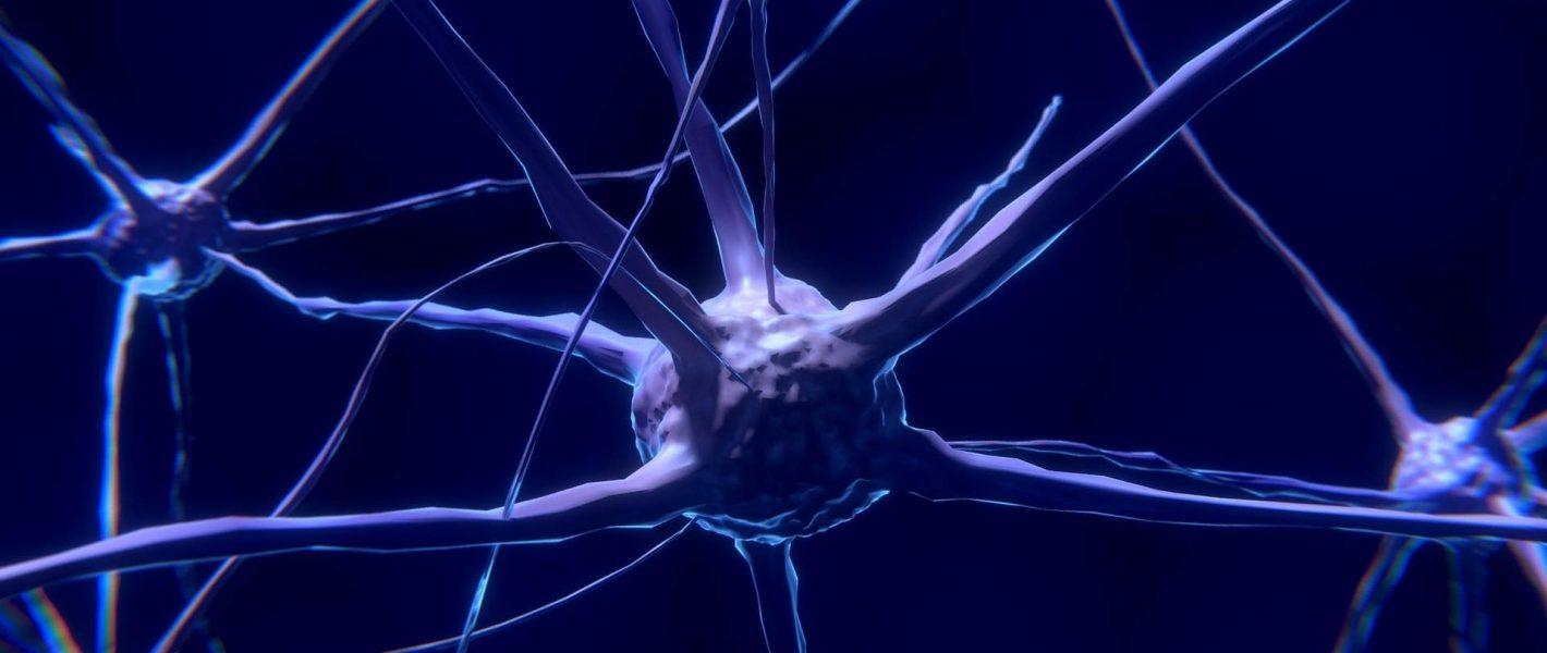 GABA Tekort Symptomen Deficiëntie Verhogen