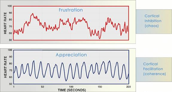 frustratie waardering dankbaarheid hartcoherentie