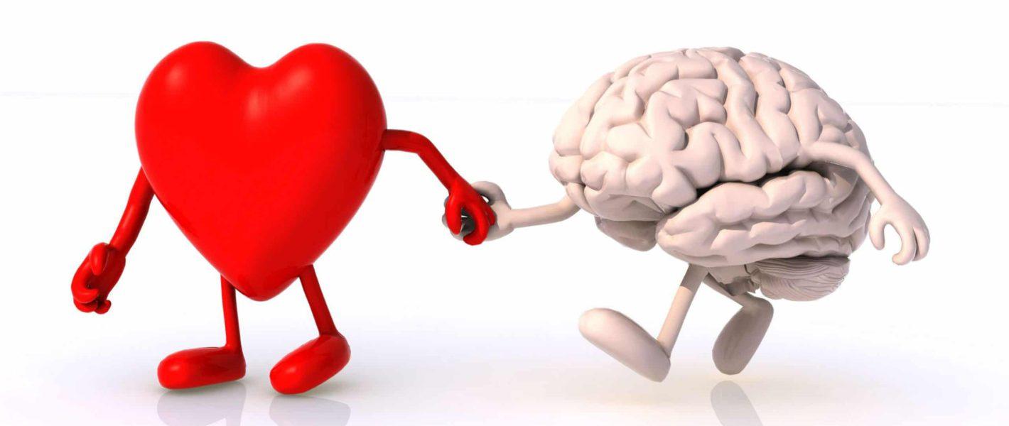 hart-brein verbinding hartcoherentie
